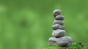 Zen Naturheilpraxis Steven Hänisch Logo- Entgiftung